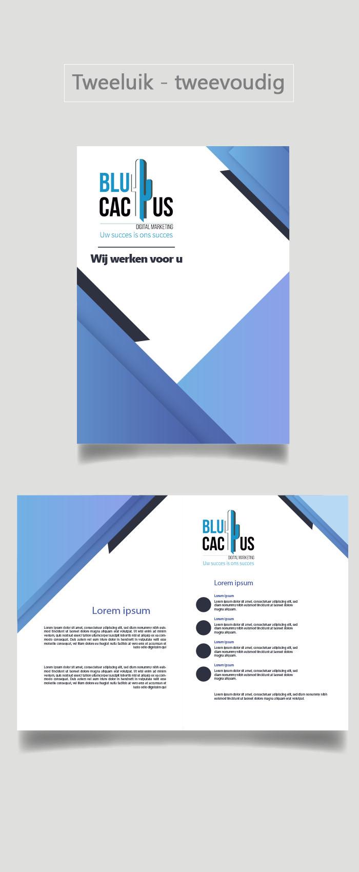 BluCactus - Brochure Ontwerp Bureau - Tweeluik