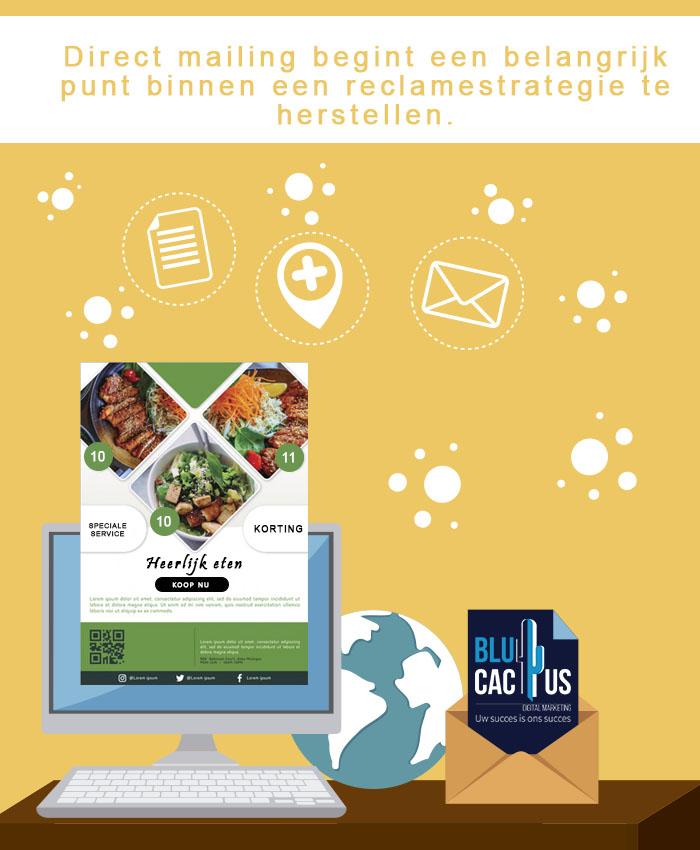 BluCactus - Brochure ontwerp bureau - Direct mailing
