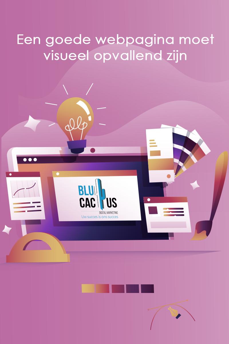 BluCactus Webdesign bureau - een computer scherm met diverse folders