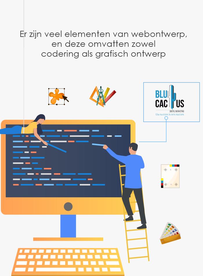 BluCactus Webdesign bureau - 2 web ontikkelaars maken een site