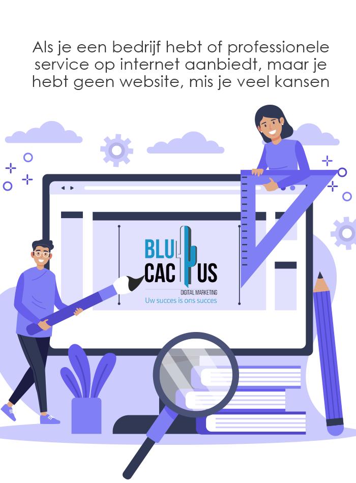 BluCactus-Web ontwikkeling Professionele service op internet