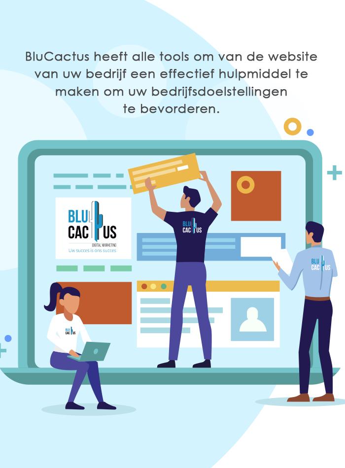 BluCactus Web design - 3 web ontwerpers werken aan een nieuwe website