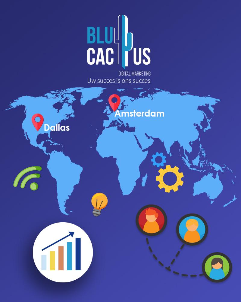 Blue Cactus - Oneline Marketing Bureau - wereld map