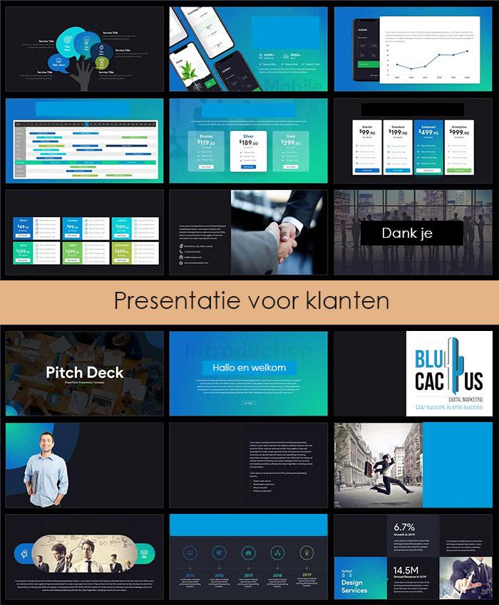 BluCactus - Pitch deck presentatie laten maken