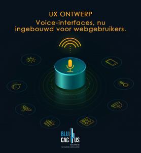 Blucactus-UX-Design-Guidelines- grafische ontwerp trends in 2020