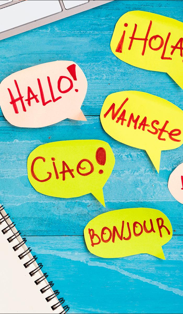BluCactus - Brochure laten vertalen