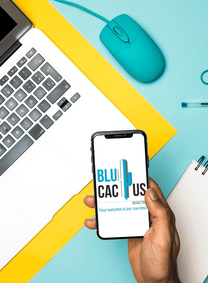 BluCactus Brochure Vertaaldienst