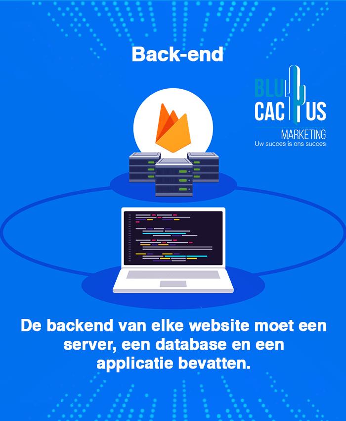BluCactus - Software ontwikkeling bedrijf - verbind het front-end met het back-end