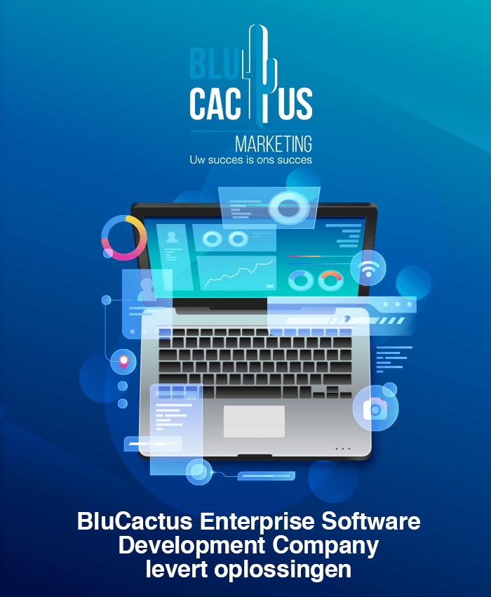 BluCactus - Software Ontwikkeling bedrijf levert oplossingen