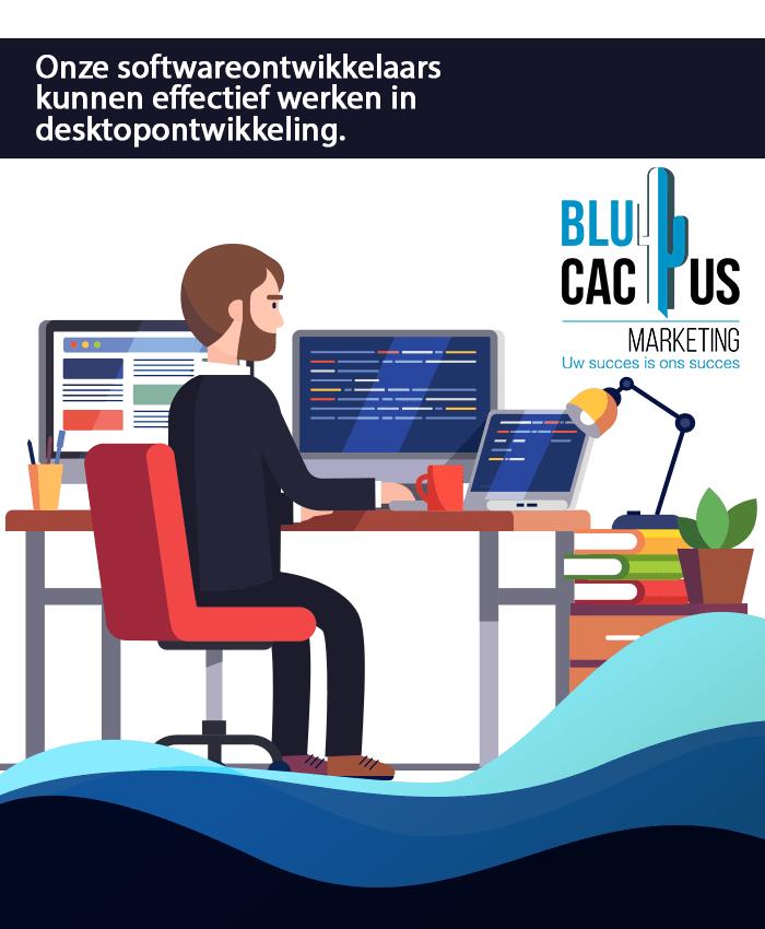 BluCactus - Software ontwikkelaars