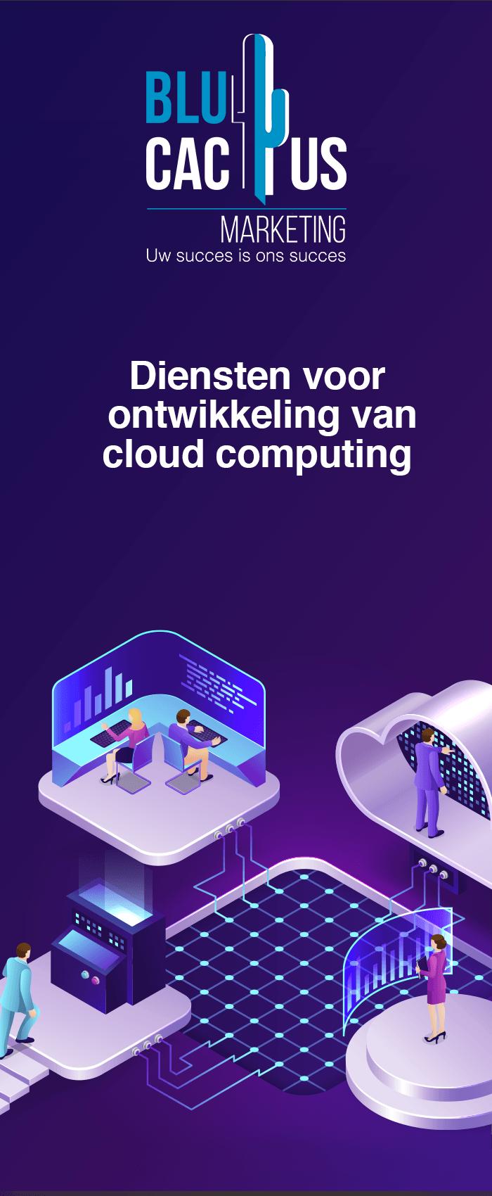 BluCactus - software ontwikkeling bedrijf - Cloud computing