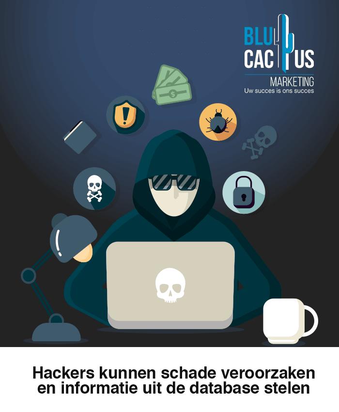 BluCactus - Hackers kunnen schade veroorzaken