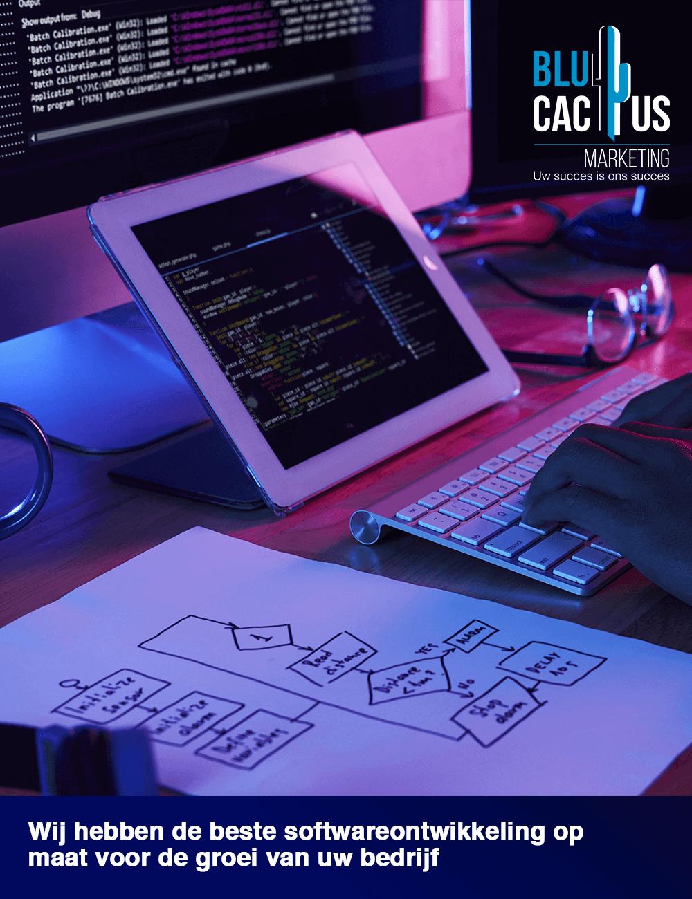 BluCactus Software ontwikkeling bedrijf