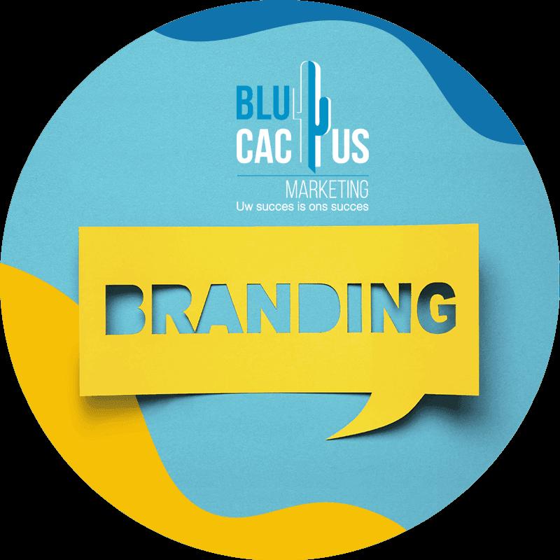 BluCactus-Branding Bureau - Merkidentiteit