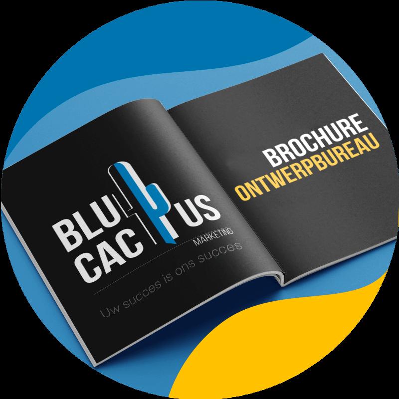 BluCactus Brochure ontwerpbureau- bedrijfsbrochure laten maken