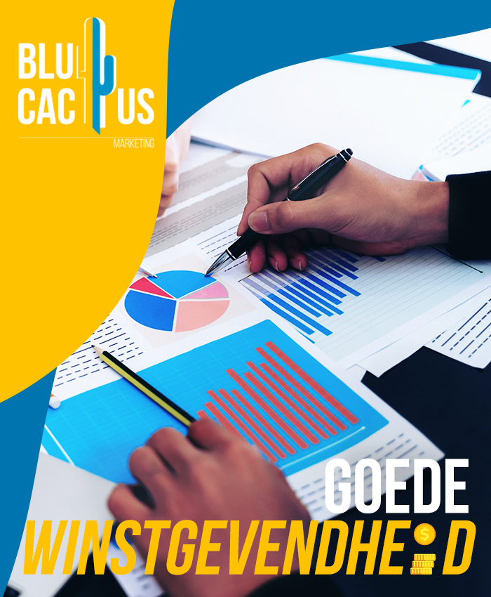 BluCactus Brochure ontwerp goede winstgevendheid - bedrijfsbrochure laten maken