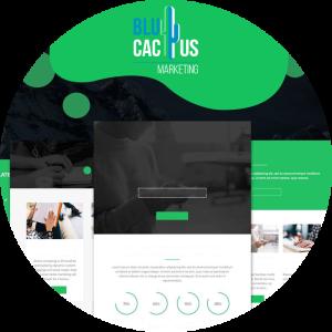 BluCactus-Factory-applicatie