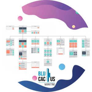 BluCactus-6-software-grootte