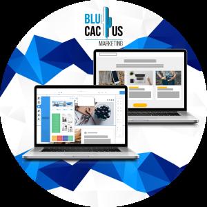 BluCactus-Hoeveel-doet-maat-software-ontwikkeling-kosten-De-twee-soorten-bedrijfssoftware.