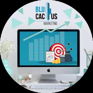 BluCactus-11-Designing-the-budget