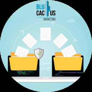 BluCactus--migratie-van-bestaande-data.p