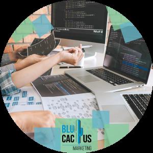 BluCactus--De-complexiteit-van-de-software.