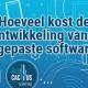 BluCactus-Hoeveel-doet-maatwerk-software-ontwikkeling-kosten-Cover-Page.