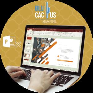 BluCactus-biedt-het-team-van-het-marketingbureau-BluCactus