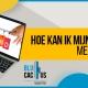 BluCactus - Hoe kan ik mijn merkidentiteit meten - TITLE