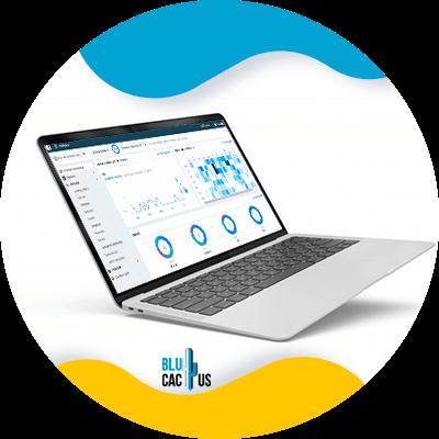 Blucactus-- Hoe kan ik mijn merkidentiteit meten - KPI_s-of-scope