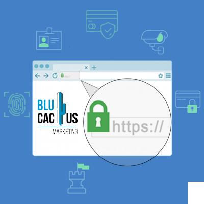 BluCactus - het protocol https