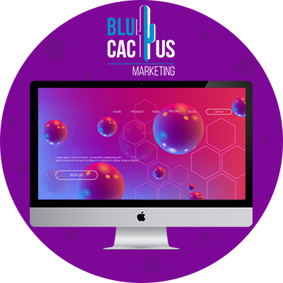 BluCactus -designs in 3d