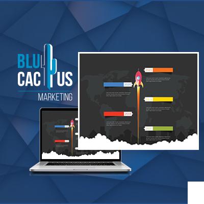 BluCactus - gebruik van de infographic