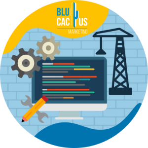 BluCactus - Wat is een Softwareontwikkelingsbedrijf? - bouwen we specifieke oplossingen