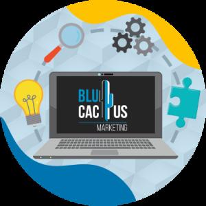 BluCactus - Wat is een Softwareontwikkelingsbedrijf? - heeft alles wat je nodig hebt