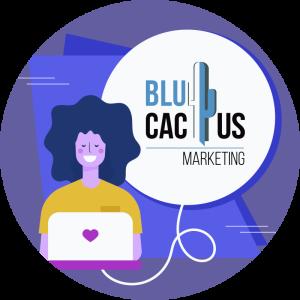 Blucactus - Conclusie