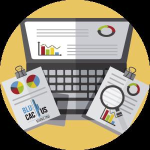 Blucactus - Wat is een Presentatie? - grafische afbeeldingen en diagrammen