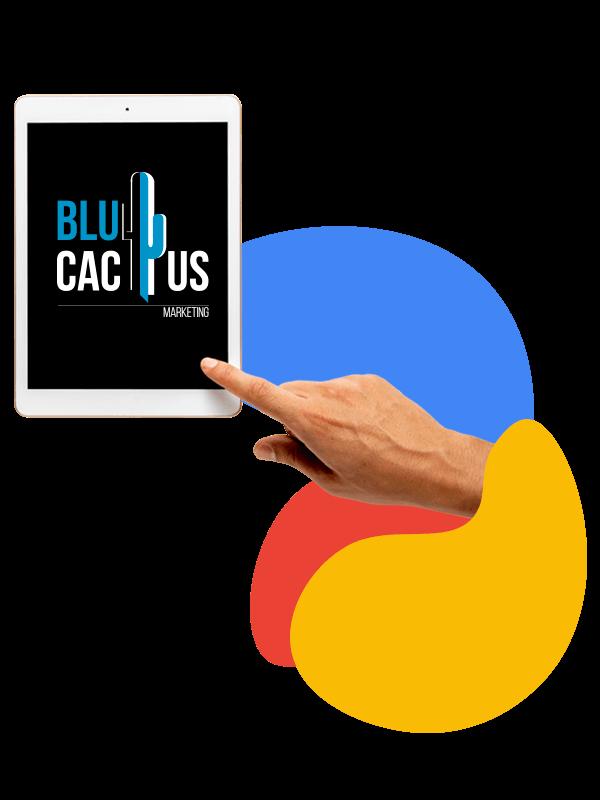 BluCactus - Behaal uw bedrijfsdoelstellingen met een uitgebreide digitale marketingstrategie