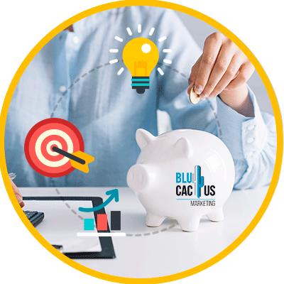 Blucactus - kosten