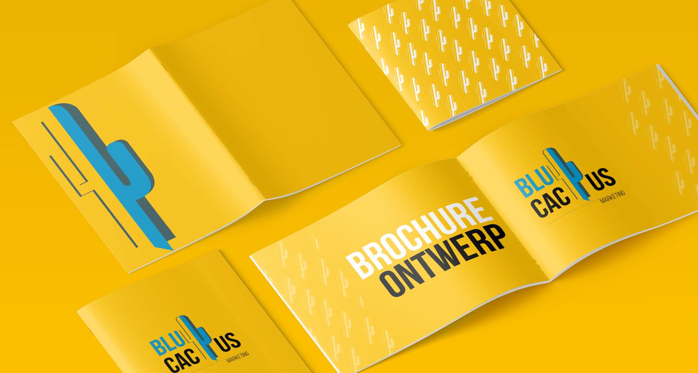 Uw bedrijfsbrochure laten maken bij BluCactus +31-20-737 00 27