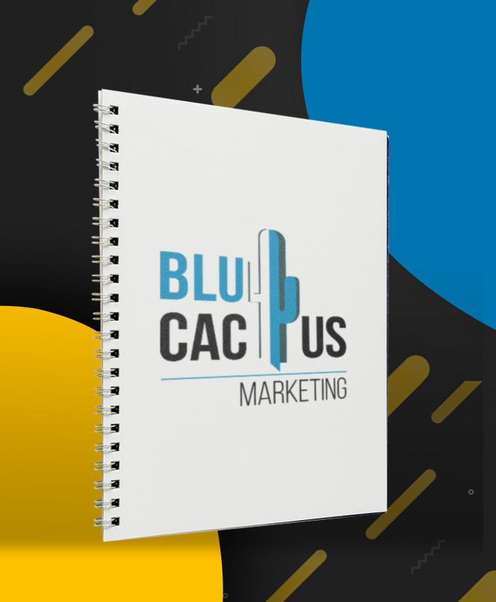 BluCactus Amsterdam - Creatieve Webdesign verbetert uw bedrijfsimago