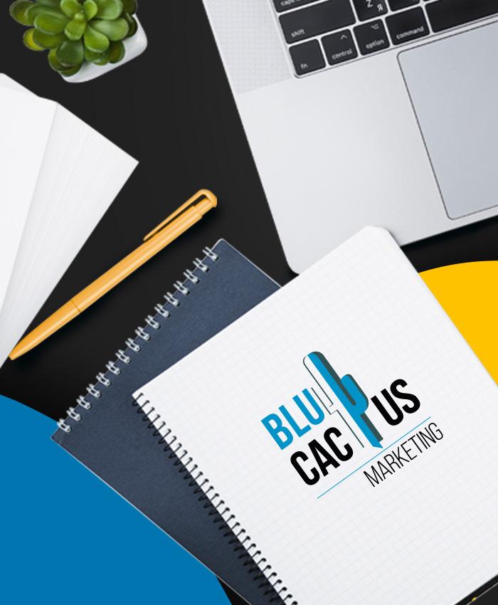 BluCactus - Webdesign Bureau Amsterdam