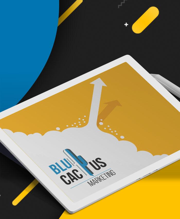 BluCactus - Webdesign Bureau Amsterdam - Page Loading Speed