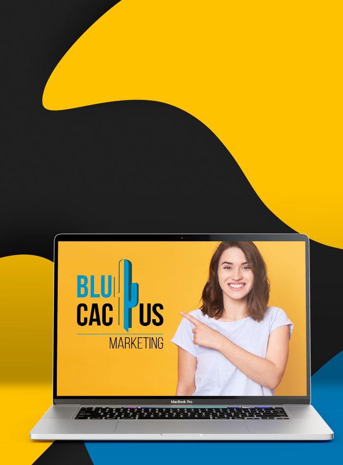 BluCactus - Webdesign Bureau - Solide navigatie