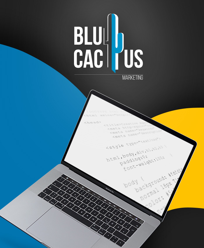 BluCactus - Webcodering en ontwikkeling