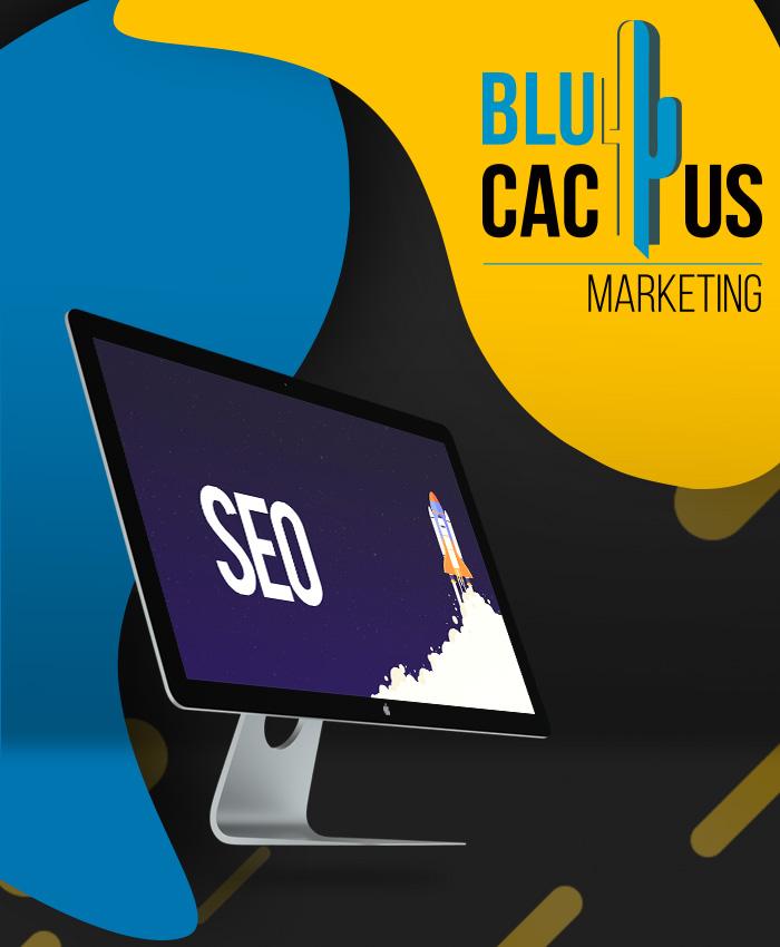 BluCactus - zoekmachine optimalisatie SEO
