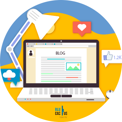 Blucactus-Wat is Black Hat SEO?-Creatie-van-PBNs-of-Private-Blog-Networks.