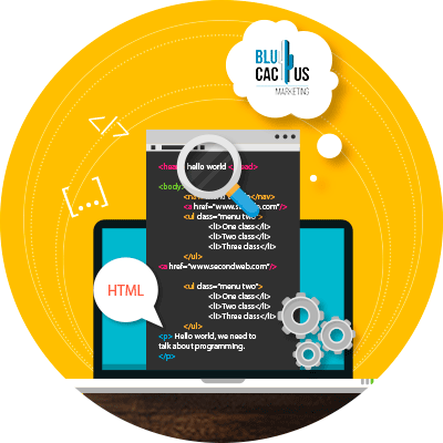 Blucactus-HTML-code
