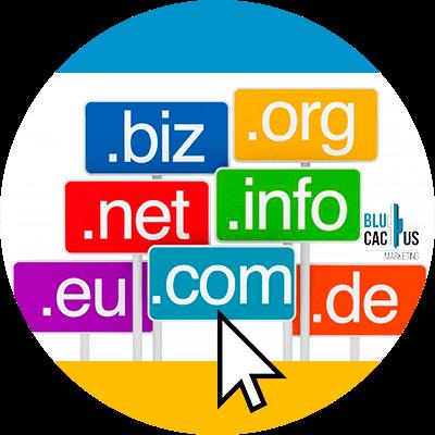 Blucactus-Hoe-om-mijn-domein-web-te-kiezen.