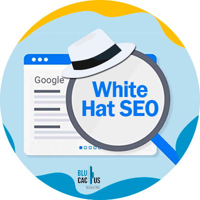 Blucactus-white hat seo- In-de-praktijk-Wat-is-de-White-Hat-SEO.